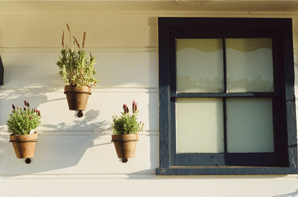 house window flowerpots large